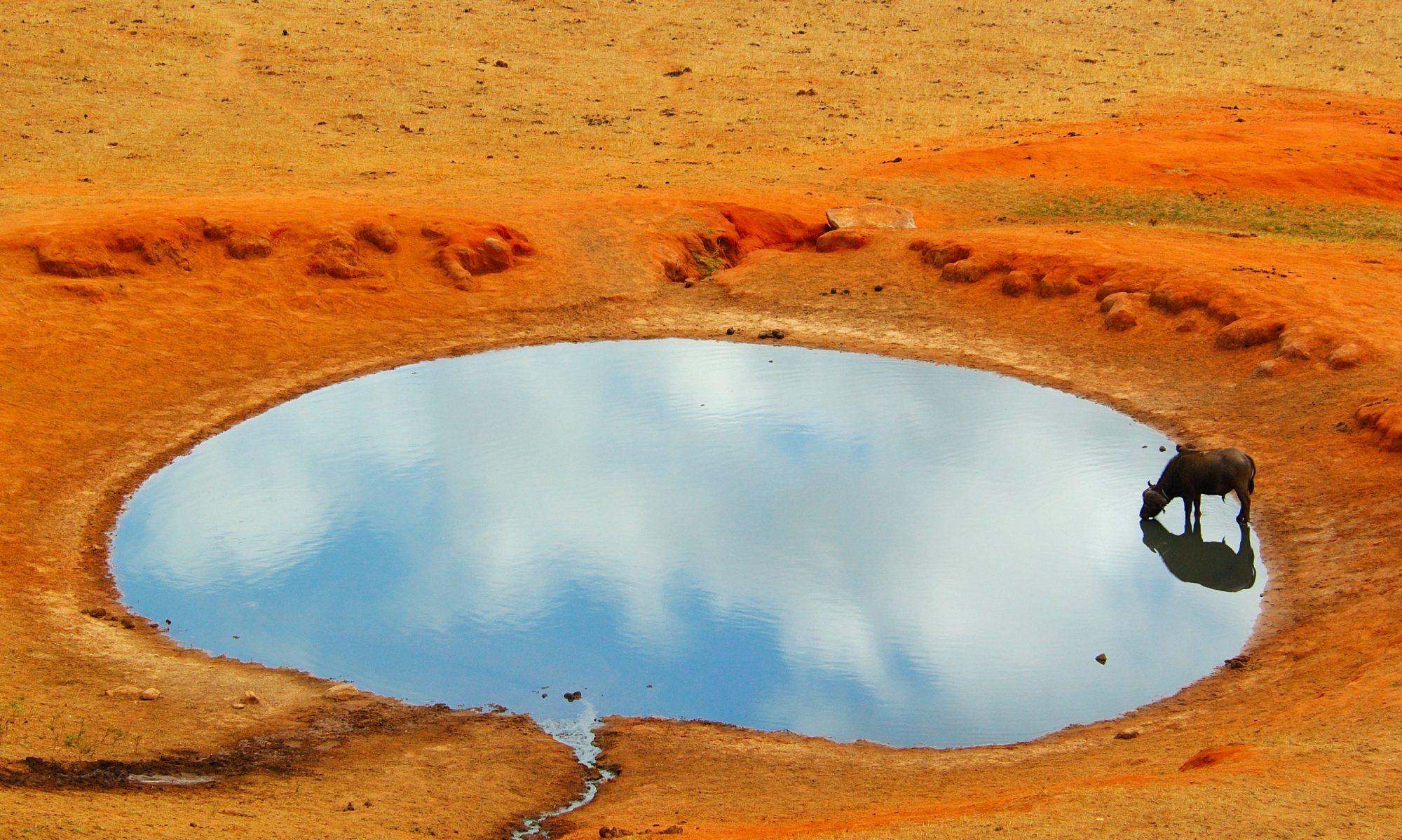 naturfotograf.eu